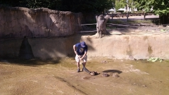 peter-cleaning-pool--img_20180713_093843148_43488024371_o